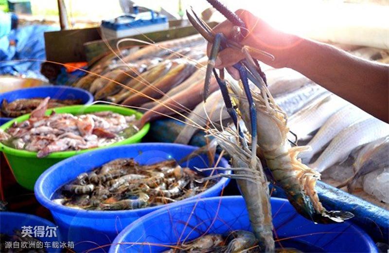 趁着周末小长假,驱车前往海边批发市场,势要把最新鲜的海鲜运回家,让